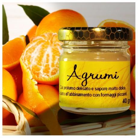 Honey and cheese - Citrus