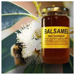 Balsamel - balsamic honey