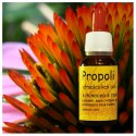 Propolis with echinacea and Rosa Canina