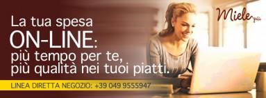 Fattoria e shop Miele Più Giarin Padova